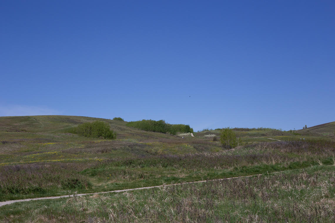 A bike trail at Nose Hill connects nature with residential communities